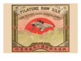 Filature Raw Silk