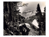 Hoh-Solduc Trail  Olympic Peninsula  Undated