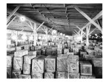 Warehouse of Earthenware at GN Docks  1926