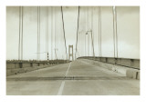 Galloping Gertie: The Tacoma Narrows Bridge  1940