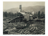 Logging Mill  Circa 1929