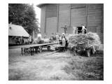 Harvesting Hay  Circa 1909