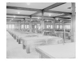 Billiard Room  Green Park  Circa 1918
