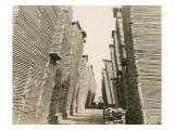 Shaffer Box - Lumber Piles  1928