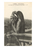 Gargoyle on Notre Dame  Paris