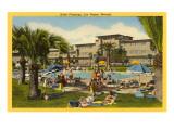 Hotel Flamingo Pool  Las Vegas  Nevada