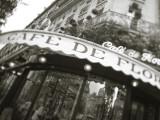 Cafe De Flore  Boulevard St Germain  Paris  France