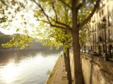 River Seine and Ile St Louis  Paris  France