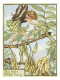 The Ash Tree Fairy