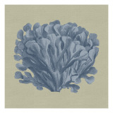 Chambray Coral III Reproduction d'art par Vision Studio
