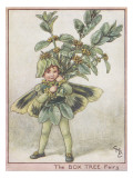 The Box Tree Fairy
