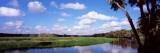 Reflection of Clouds in a River  Myakka River  Myakka River State Park  Sarasota County  Florida