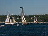 Schooner Leaving Harbor For a Race  Gloucester Schooner Festival  Gloucester  Cape Ann  MA