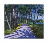 Avenue of Pines
