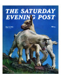 """Two Kid Goats "" Saturday Evening Post Cover  May 9  1942"