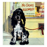 """No Dogs Allowed "" August 24  1946"