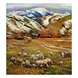 """""""Sheep Ranch """" March 18  1961"""