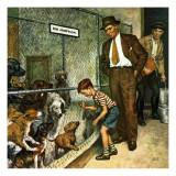 """Dog Pound "" September 17  1949"