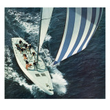 """America's Cup "" August 22  1964"