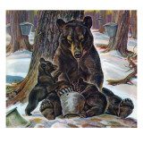 """Bears Eating Maple Syrup "" March 28  1942"
