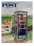 """Cub Scouts in Phone Booth "" Saturday Evening Post Cover  August 26  1961"