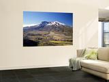 Mount St Helens National Volcano Monument  Washington  USA
