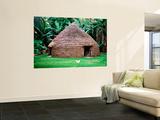 Traditional Kanak House  Lifou Island  Loyalty Islands  New Caledonia