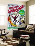 Amazing Spider-Man No1 Cover: Spider-Man