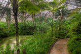 Garfield Park Conservatory Pond And Path Chicago