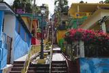 Colorful Houses  Gurabo  Puerto Rico