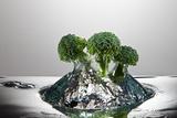 Broccoli FreshSplash