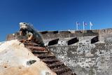 Iguana Basking  San Cristobal Fort  San Juan  PR