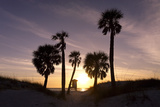 Sunset View  Clearwater Beach  Florida