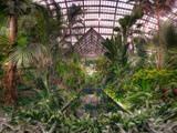Garfield Park Conservatory Reflecting Pool