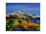 Provence 569010