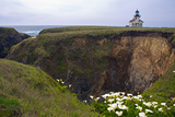 Lighthouse and Lilies  Point Cabrillo  Mendocino