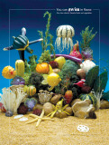 Under the Sea Foodscapes™
