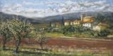 Hillside Olives
