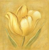Great Tulip I
