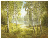 Pond Spinka