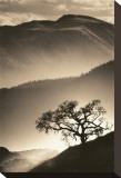 Rêves de désert II Tableau sur toile