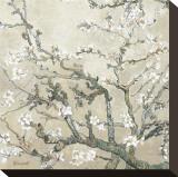 Branches d'amandier en fleurs, Saint-Rémy, vers1890 - tonalité brun beige Tableau sur toile par Vincent Van Gogh