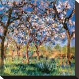 Printemps à Giverny Tableau sur toile par Claude Monet