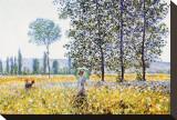 Champs au printemps Tableau sur toile par Claude Monet