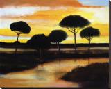Alberi di Pisa at Sunset Tableau sur toile par Judith D'Agostino