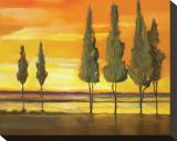 Sunset at Water's Edge Tableau sur toile par Judith D'Agostino