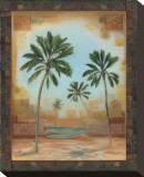Palm Oasis I