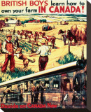 British Boys  Learn How to Own Your Farm in Canada!