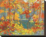 Le bassin Tableau sur toile par Tom Thomson