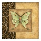 Luna Moth Square